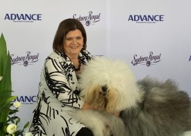 Cats and dogs take centre stage at Sydney Royal Easter Show