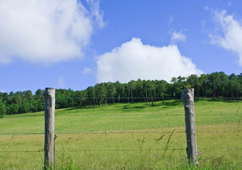 $1M funding for Esperance vermin extension fence