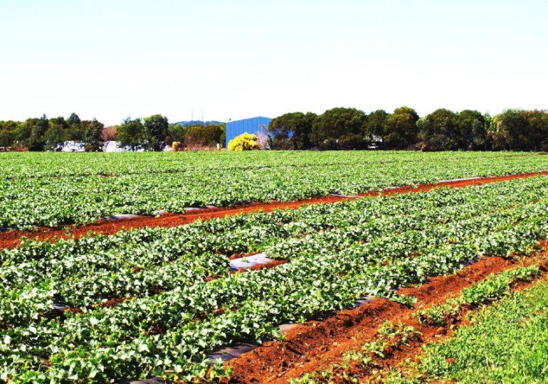 Hort360 workshop for growers in the Wide Bay-Burnett