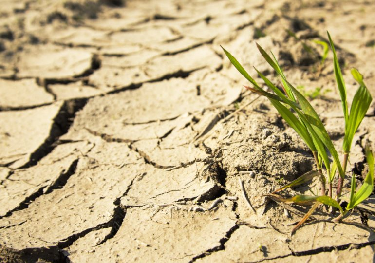New working group on drought measures