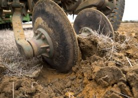 Growers invited to get hands dirty at soils forums