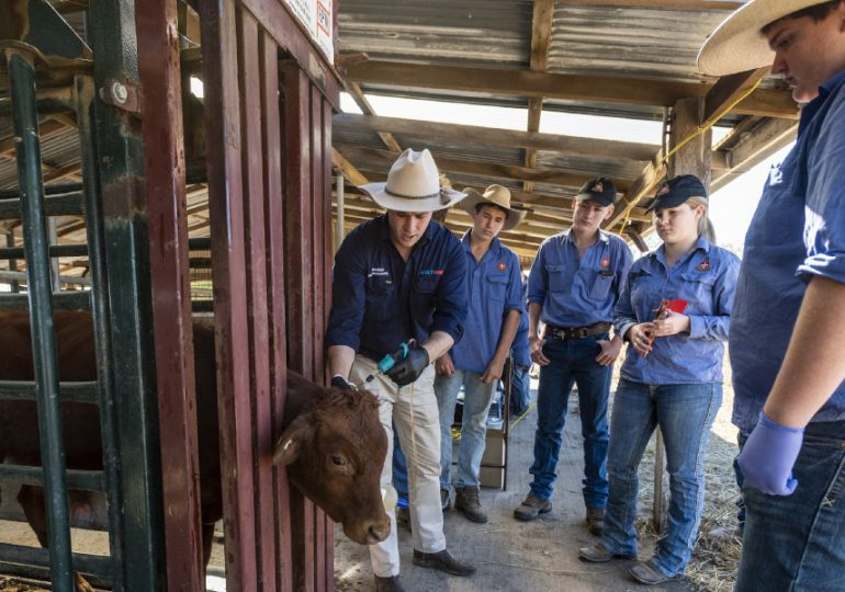 Collaboration with Rockhampton school launches trial to support agriculture's leaders of tomorrow