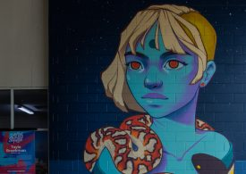 The third annual Darwin Street Art Festival leaves a colourful mark