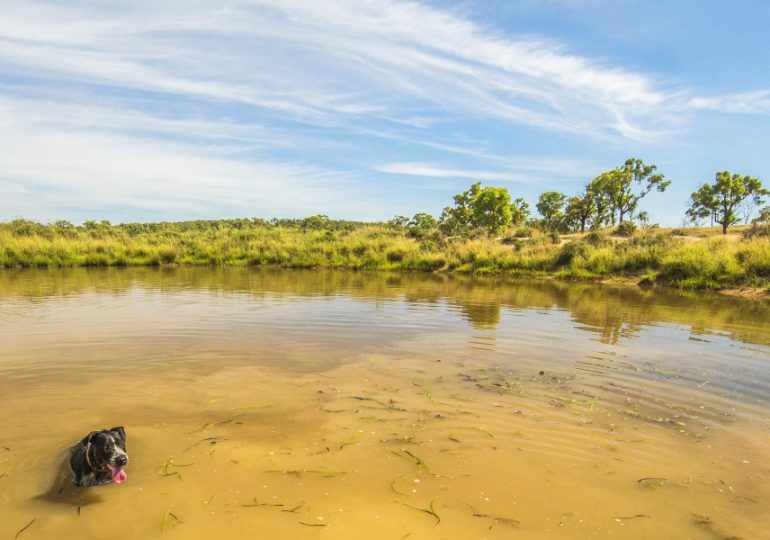Groundwater allocations available across NSW