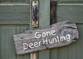 Managing feral deer