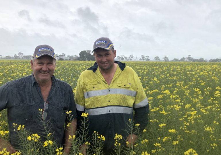 Bordertown grower's Hyola 580CT canola saving money on weed control