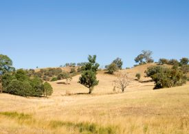 Landholders urged to enrol now for important poll