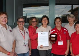 A virtual, online celebration planned to thank Bega Valley's volunteers