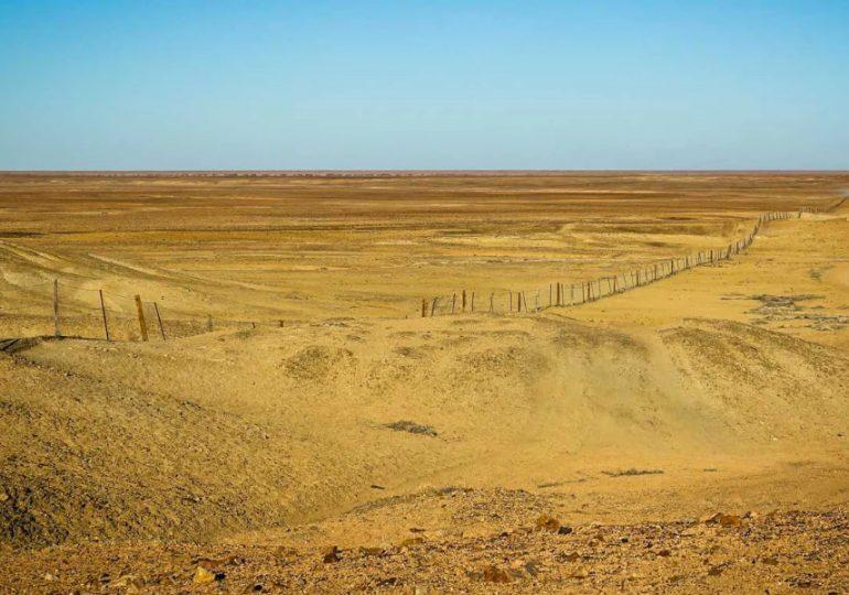 SA Dog Fence rebuild suppliers & contractors