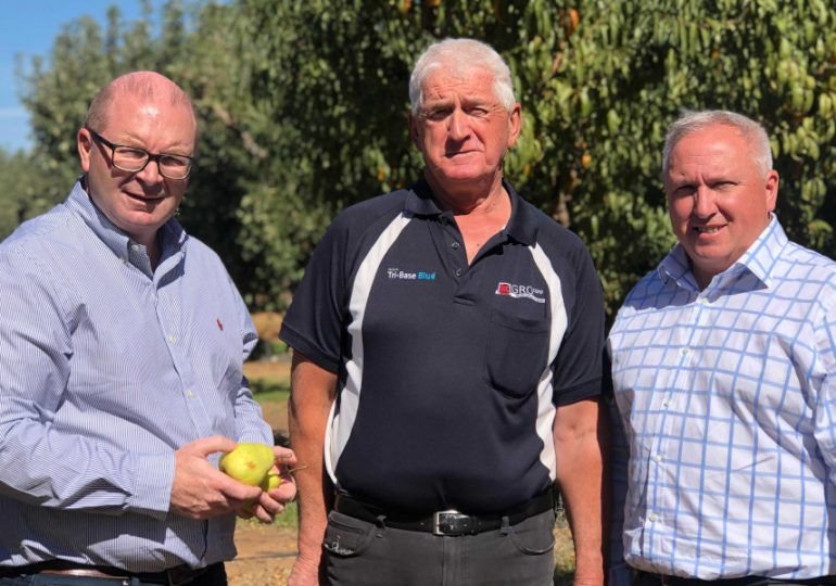 Coles' SPC partnership a boost for home-grown Aussie fruit