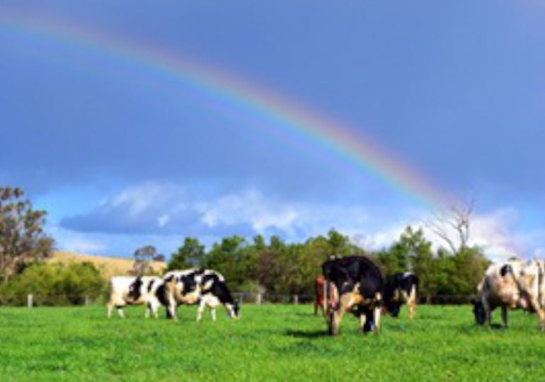 DPI dairy unit preparing industry for stronger future