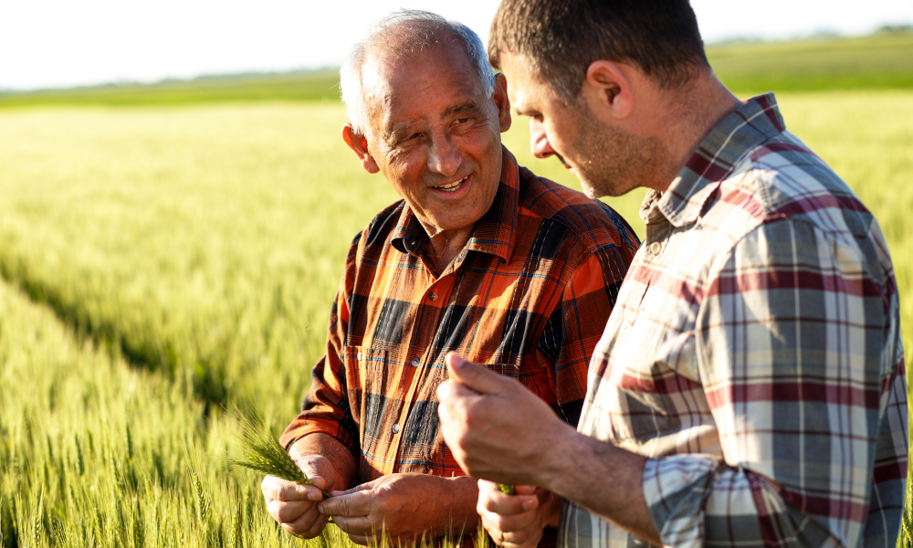New training supports grains industry workers