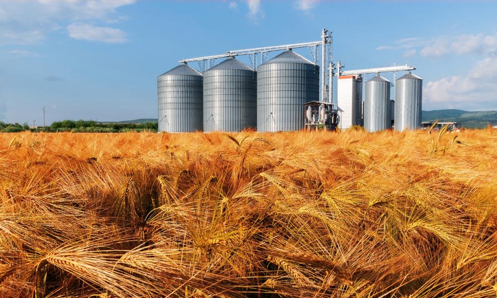 Crop disease management in focus at WA workshops