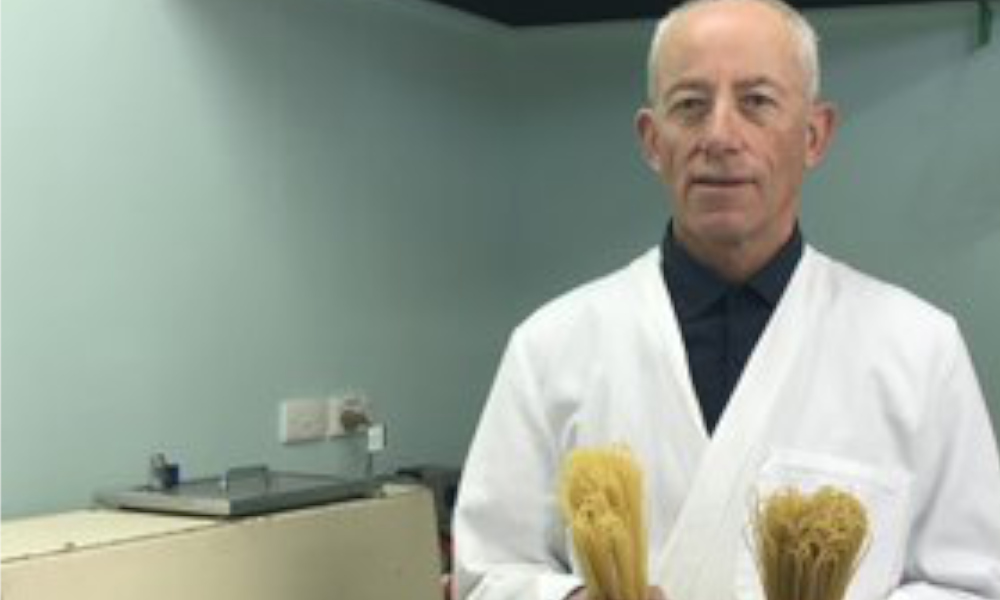 Researchers analyse perfect pasta