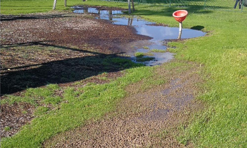 Bermagui sewer spill closes Dickinson Park